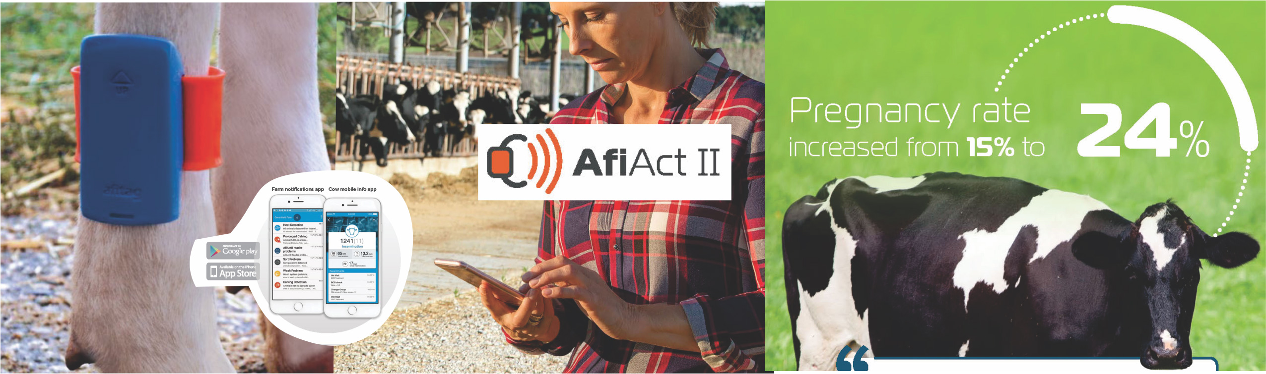 AfiAct II Cow Heat Detection with Pedometer