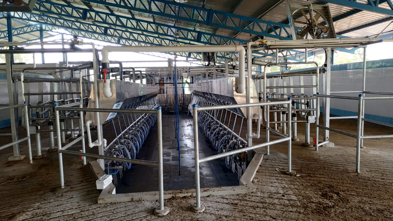 Parallel Milking Parlor